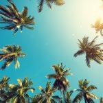 Kopierpapier & Büromaterial – Sommeraktion 2018
