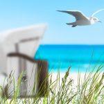 Kopierpapier – Sommeraktion 2020